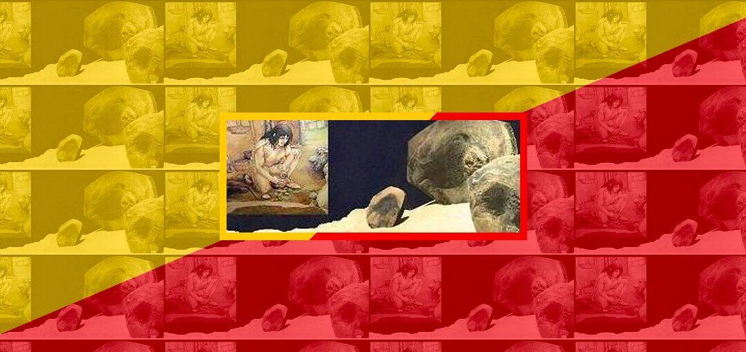 Il museo racconta - Cover