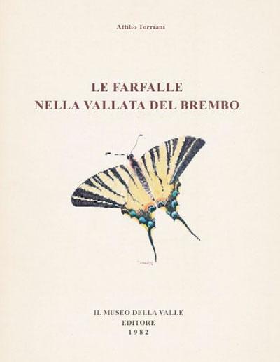 Museo della Valle Zogno Bergamo Le farfalle nella vallata del Brembo 400X516